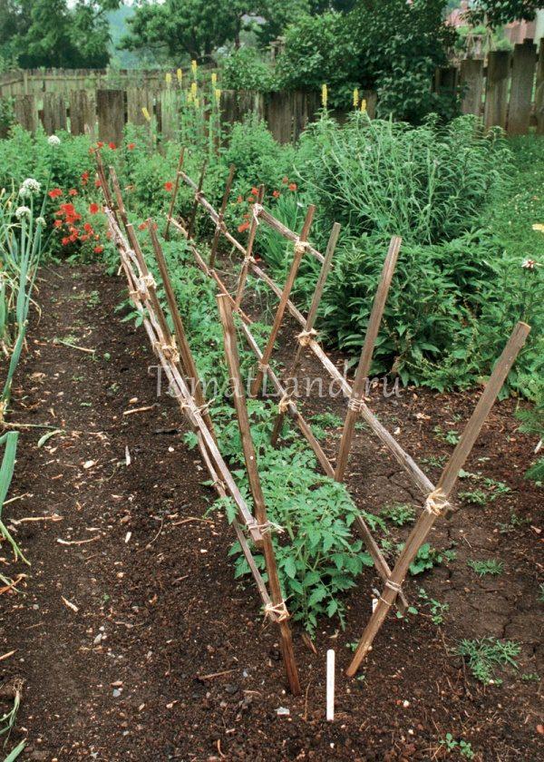 Опоры для томатов