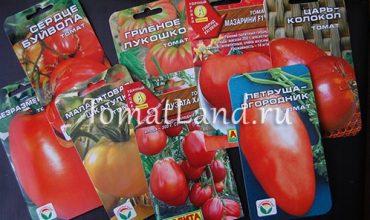 семена помидор фото