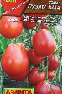 томат пузата хата отзывы