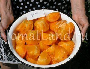 помидоры хурма