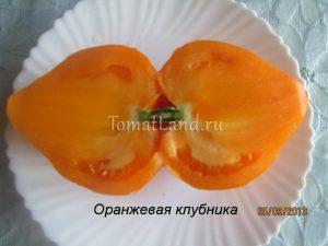 помидоры Оранжевая клубника