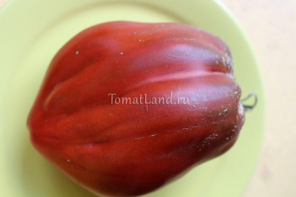 томат перцевидный кубинский