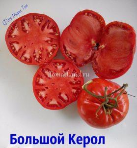 томаты сорт Большой Кэрол отзывы