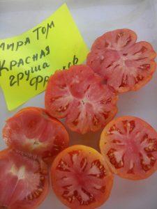 томат красная груша франков