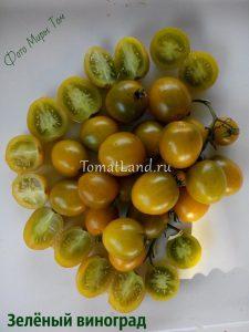 помидоры зеленый виноград отзывы
