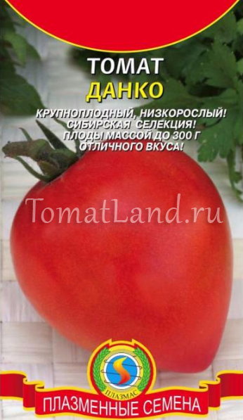 помидоры данко отзывы с фото