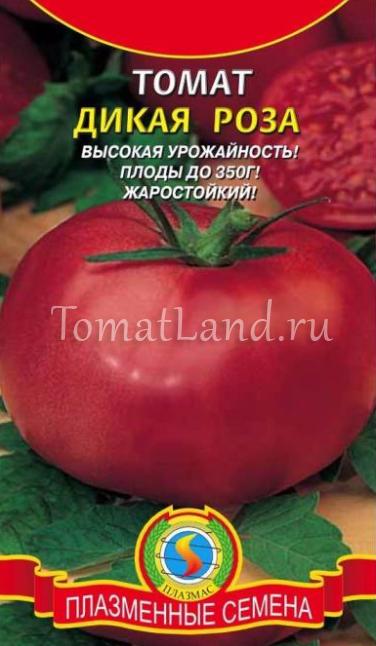 томат дикая роза отзывы фото урожайность