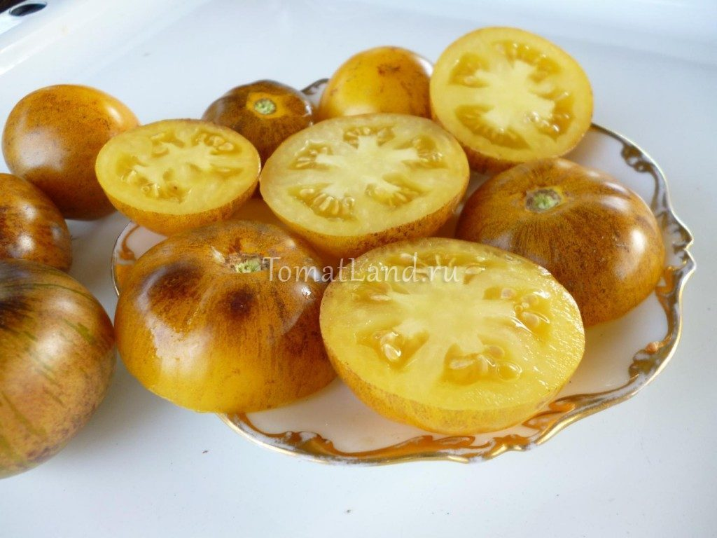 томат золотой тигр в разрезе