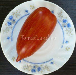 помидоры сорт Искры пламени