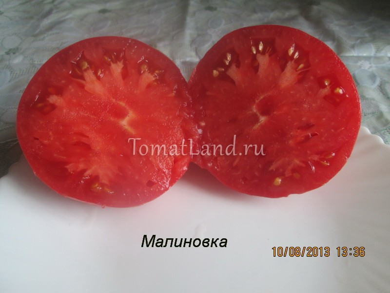 томат Малиновка фото в разрезе