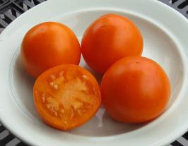 помидоры Рыжик