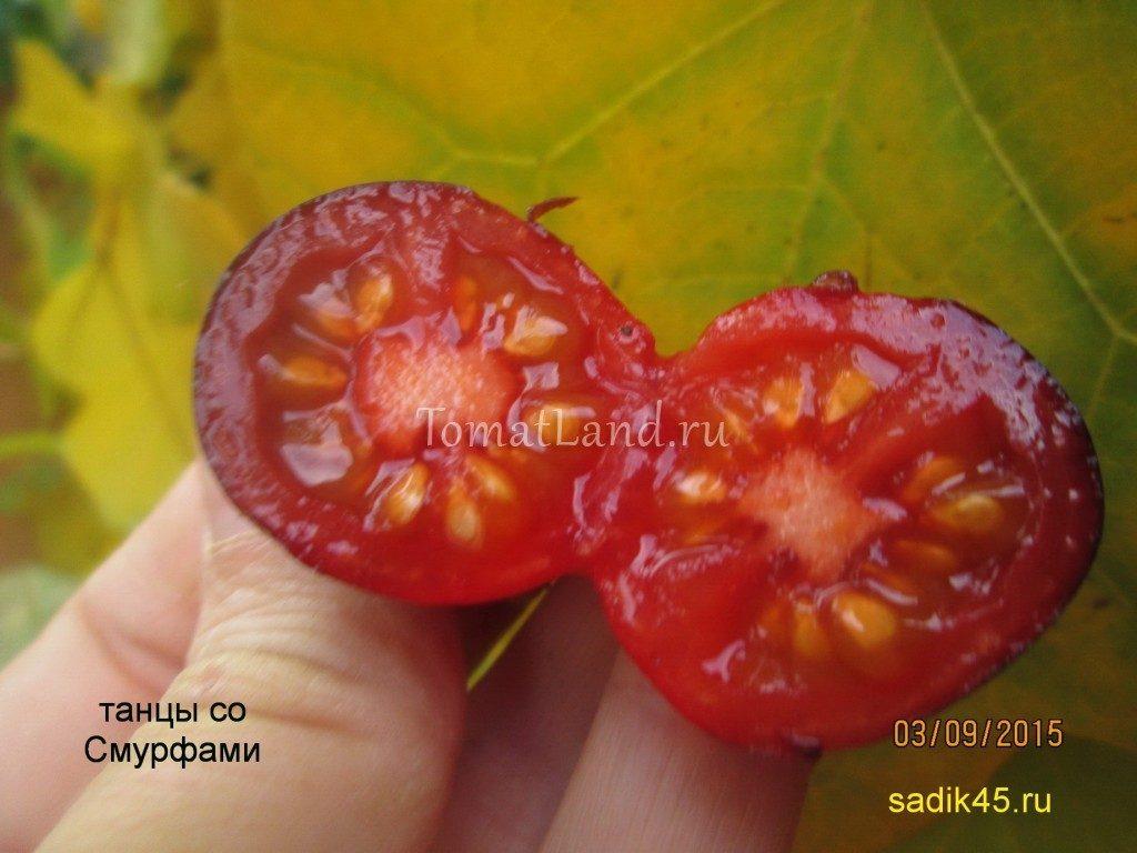 помидоры Танцы со смурфами фото в разрезе
