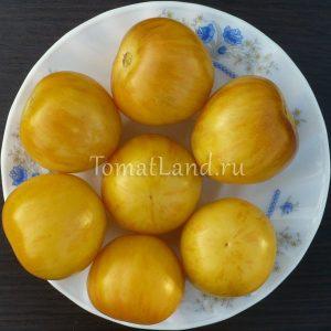 помидоры Вернмсаж желтый