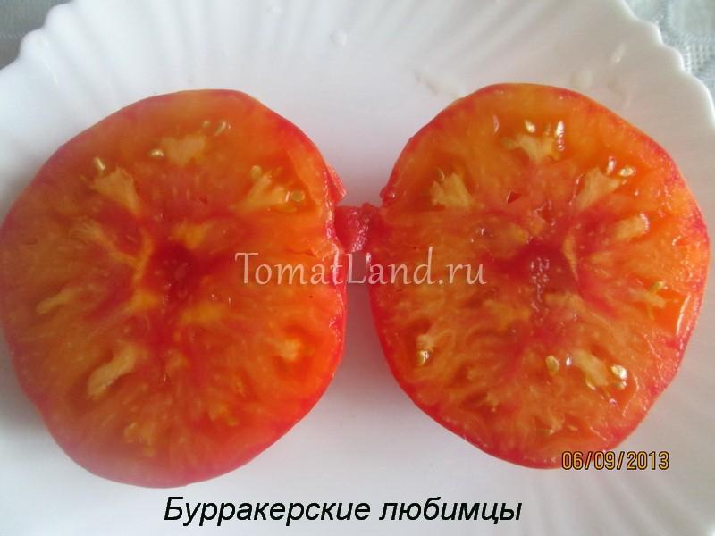 томат Бурракерские любимцы в разрезе