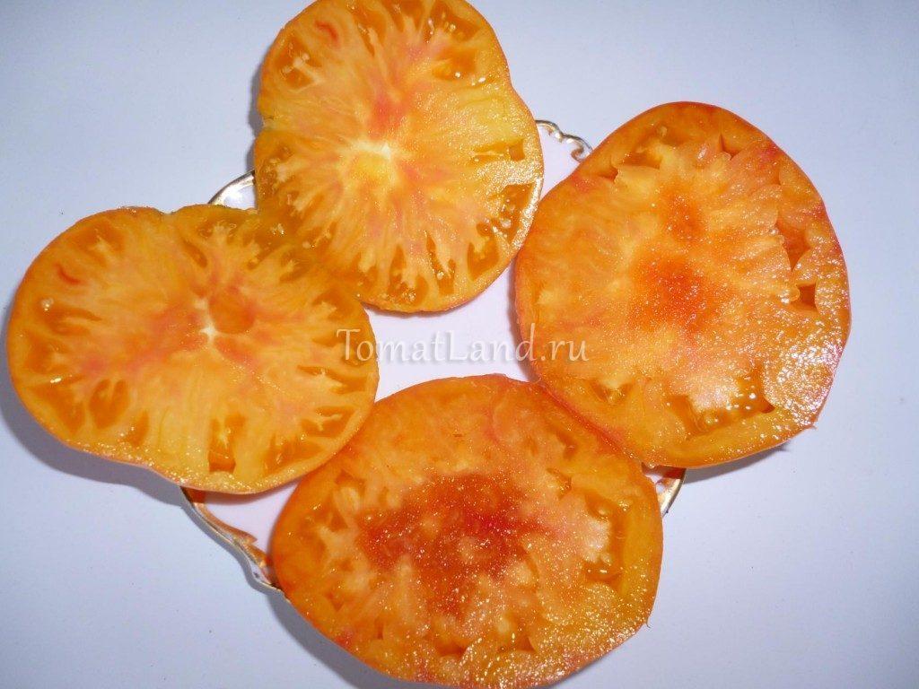 томат сорт Армянские фото в разрезе