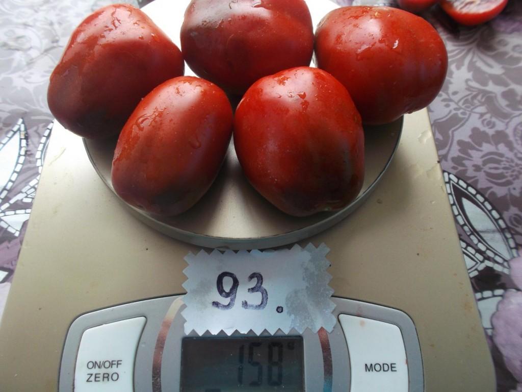 помидоры Черный мавр