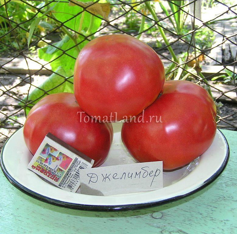 томаты джелимбер
