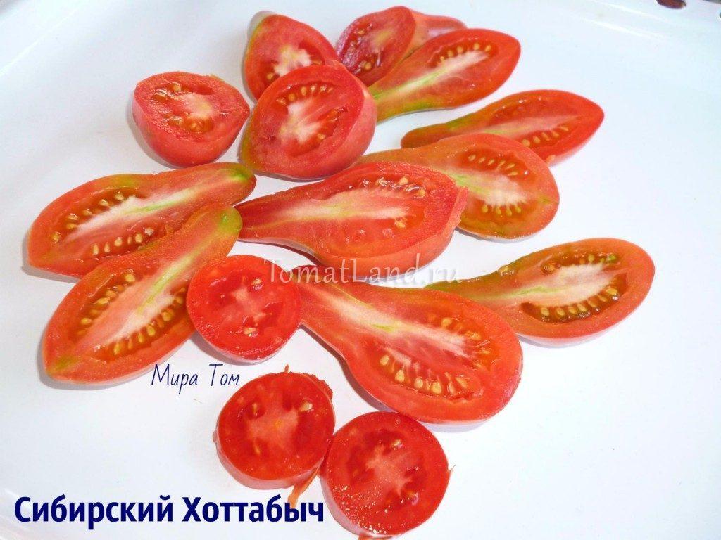 помидоры Сибирский хоттабыч фото