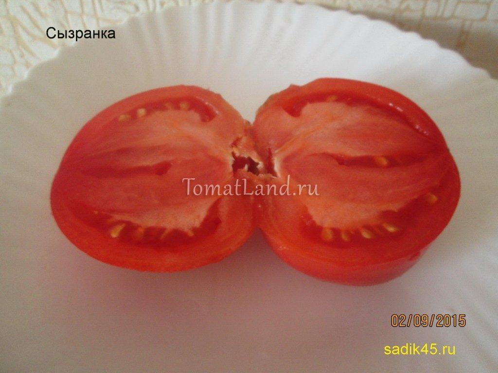 томат фото в разрезе