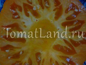 помидор сорт Алтайский оранжевый