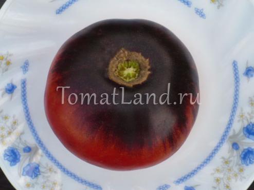 томат голубая красота фото спелых плодов