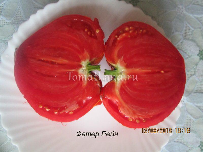помидоры фатер рейн фото в разрезе