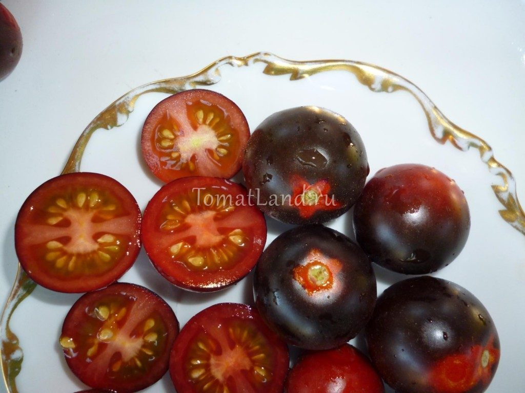 томат хельсинг фото