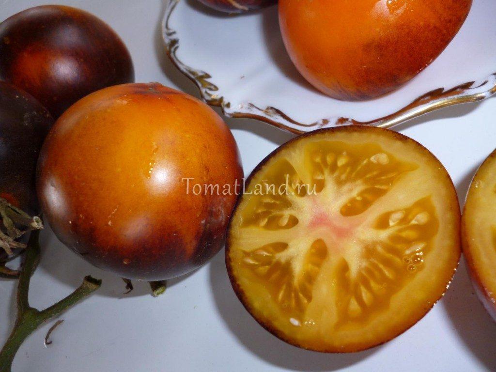 томат оранж блу фото спелых плодов