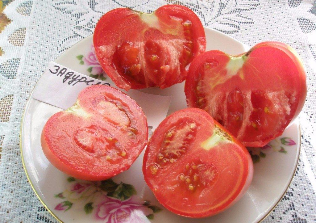 томаты Задурелла фото