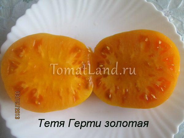 томат Золото тети Герти в разрезе