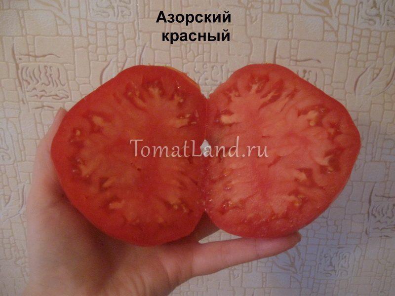 помидоры азорский красный фото в разрезе