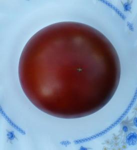 томат Бразильская красота