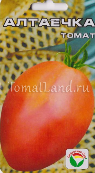 помидоры алтаечка фото