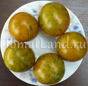 томат вэл зеленый