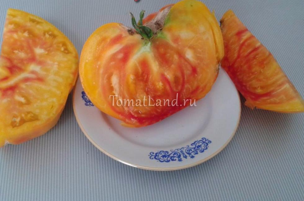 помидоры грейпфрут в разрезе