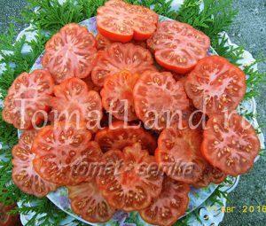 томат писанелло де брускетта