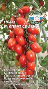 помидоры спрут сливка