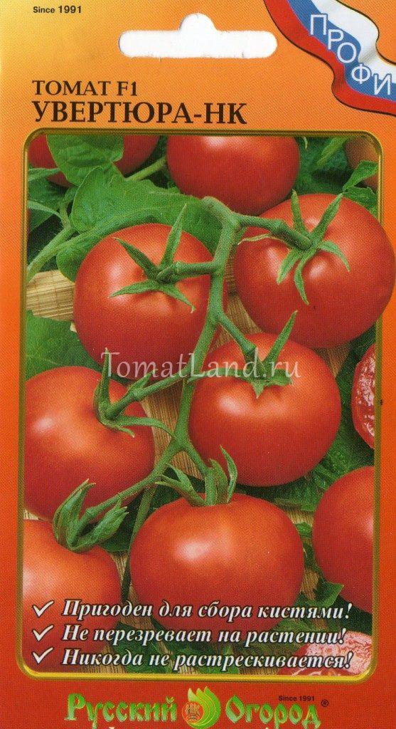 Сорт томат увертюра