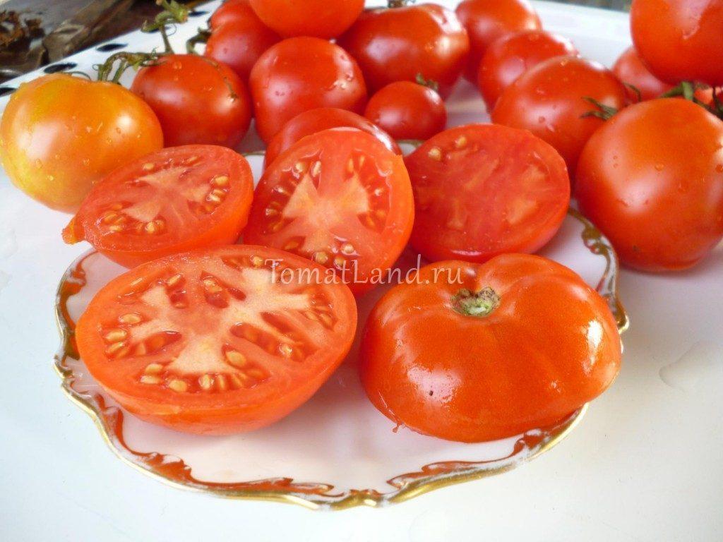 томат каменный цветок фото в разрезе