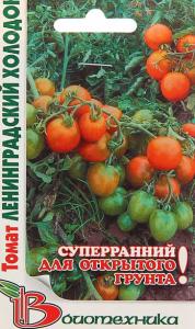 томат ленинградский холодок