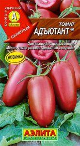 помидоры адъютант фото