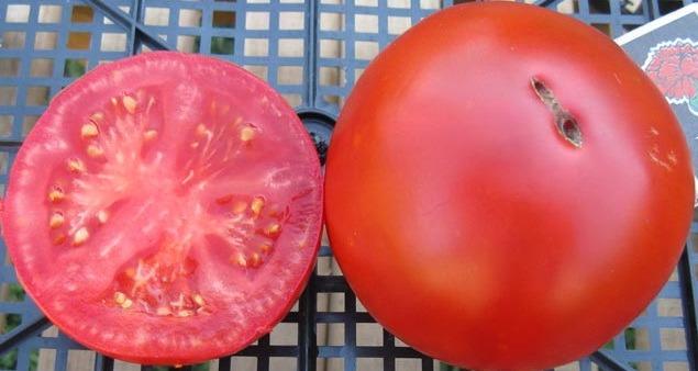помидоры Гигант Очарования