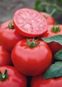 помидоры томск фото