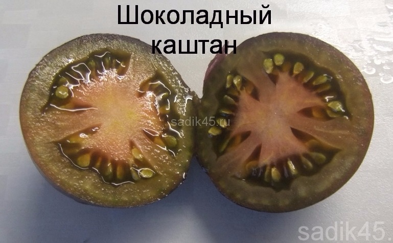 томаты шоколадный каштан фото