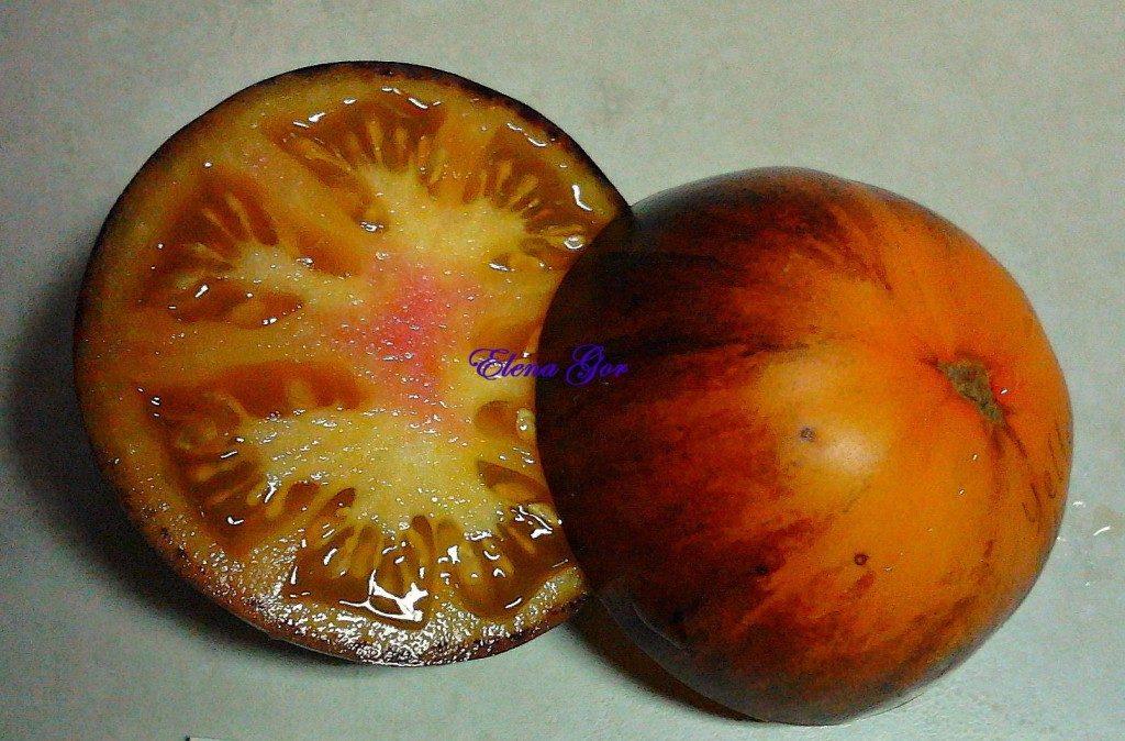 томаты Желтый дракон фото