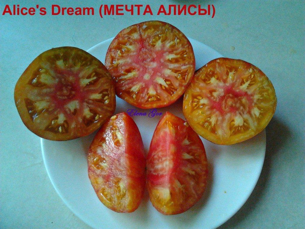 помидоры Мечта Алисы фото