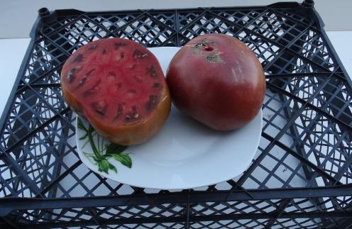 помидоры черный как уголь фото