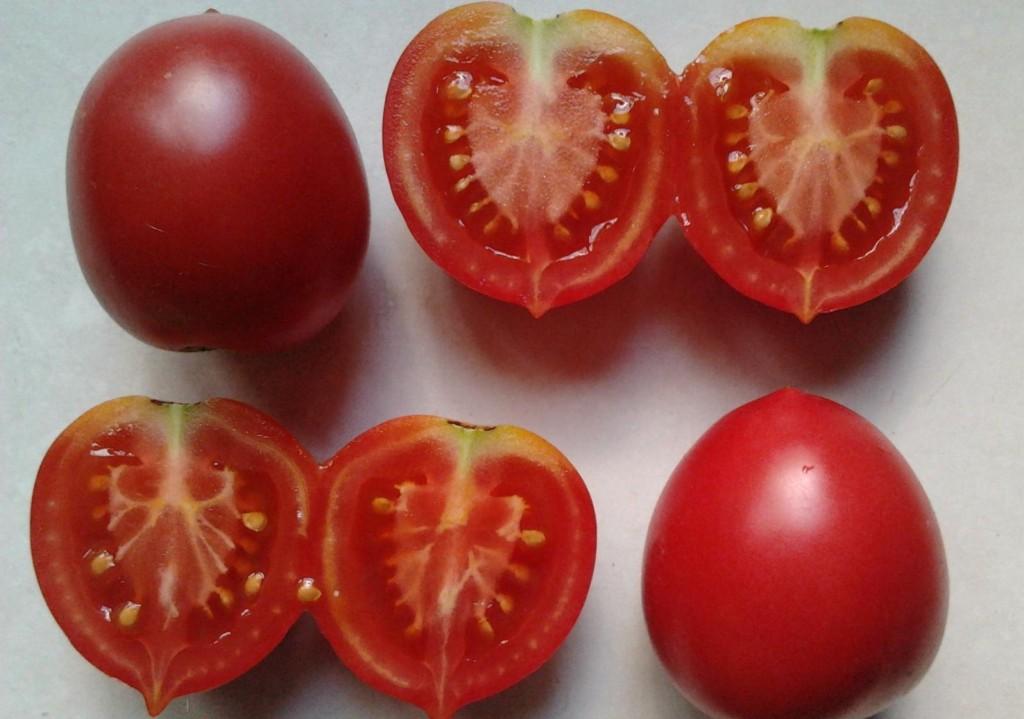 томат сызранская пипочка фото в разрезе