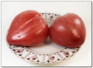 Валентина редько каталог томатов