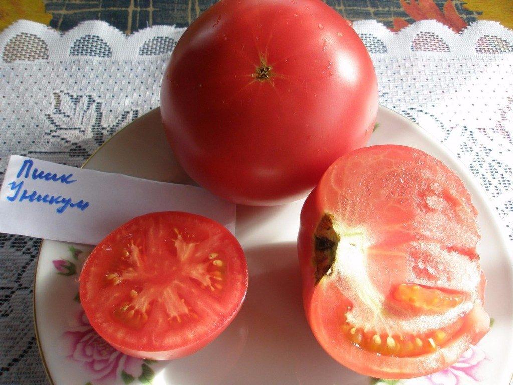 томаты пинк уникум фото